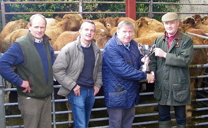 Firm cattle trade as Morris family wins Tom Gittins Cup