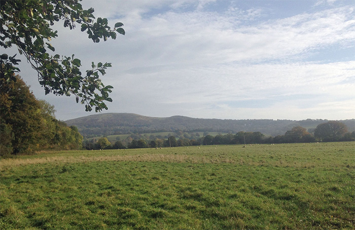 Worcestershire farmland to be let on two...