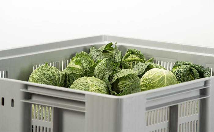 New grocery box reduces waste and keeps produce fresh