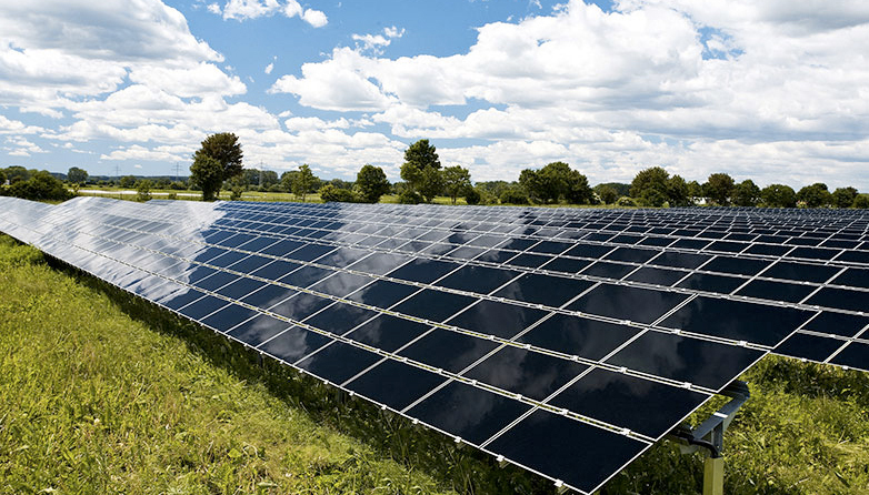 Uk Agricultural Output Not Being Harmed By Solar Panels