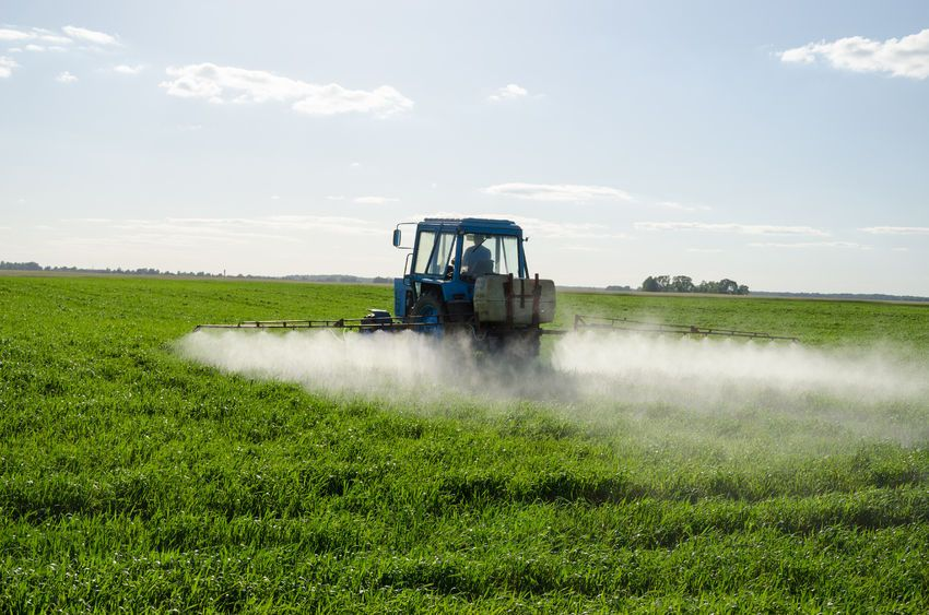 Soil Association warns farmers not to spray Glyphosate due to cancer links
