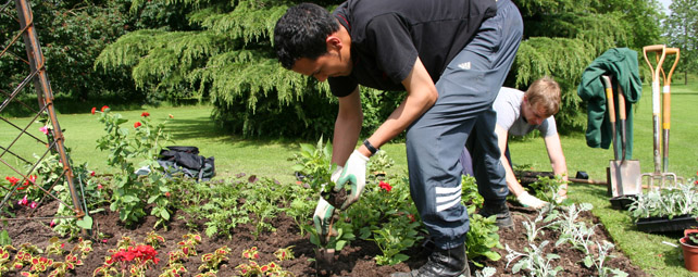 Landscape Gardening Apprenticeships : Employers pave the way to next generation of