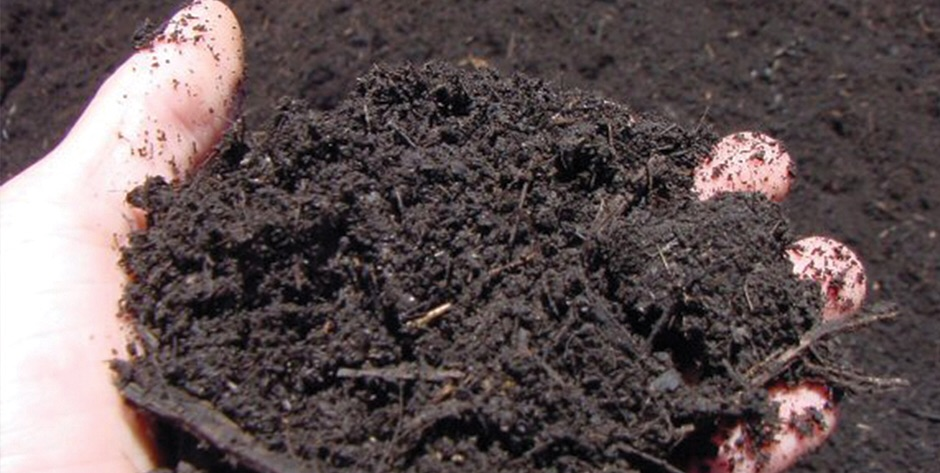 Make the most of manure: Experts say it is time to break old habits