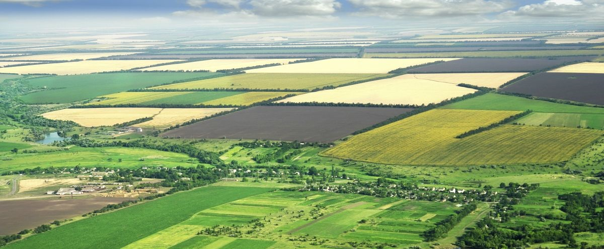 """Land """"grabbing"""" grows as agricultural resources worldwide dwindle"""