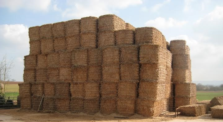 Sustainable Fuel Register to allow tonnes of previously unavailable biomass to be used