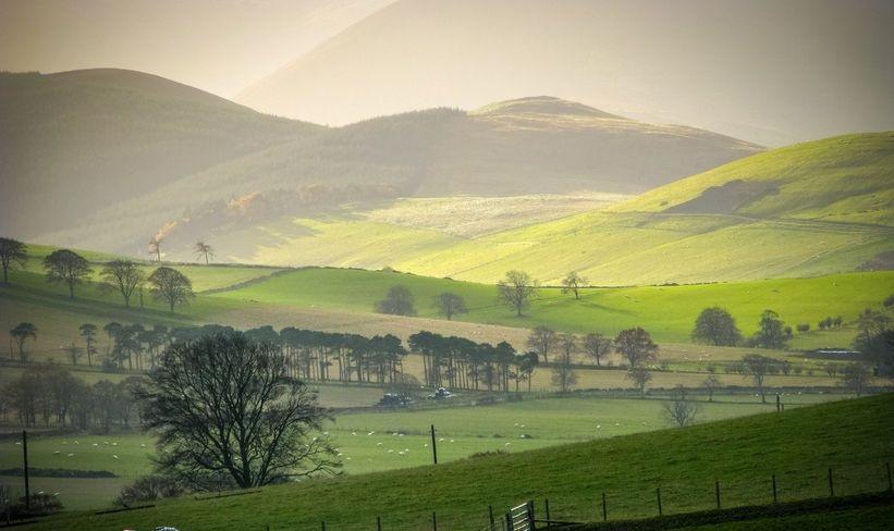 Falling land prices encouraging rise in rural entrepreneurs