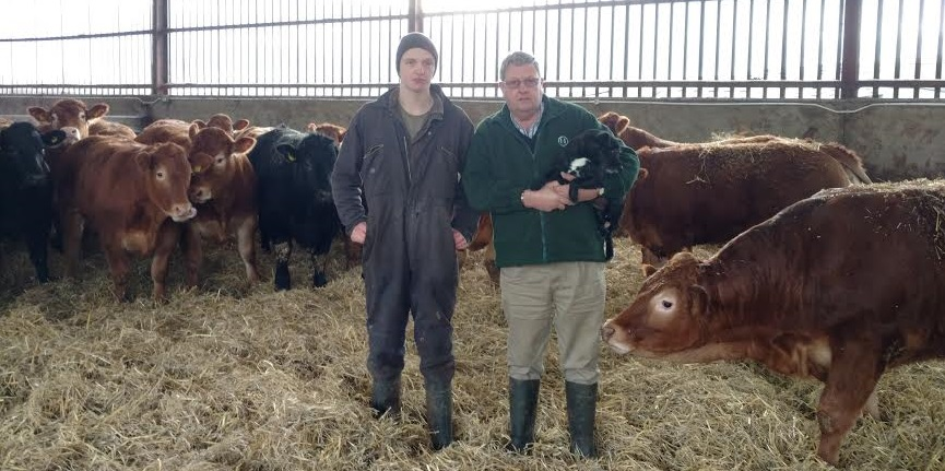 Beef Farmers Invited To Visit Top Cattle Finishing Farm