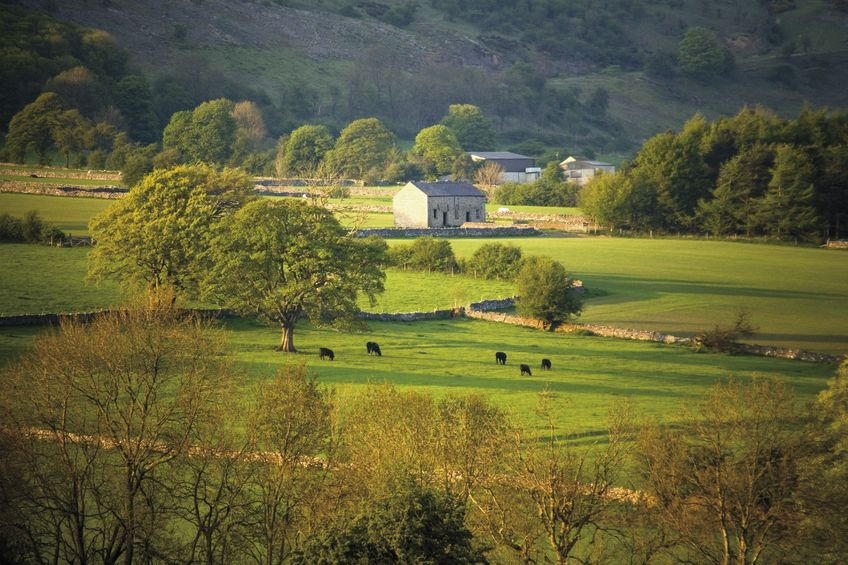 'Without farmers delivering the scheme, Countryside Stewardship will not exist'