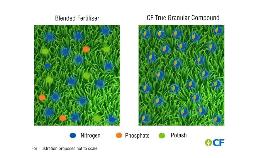 Water soluble elements boosts Nitrogen response and give grass yield