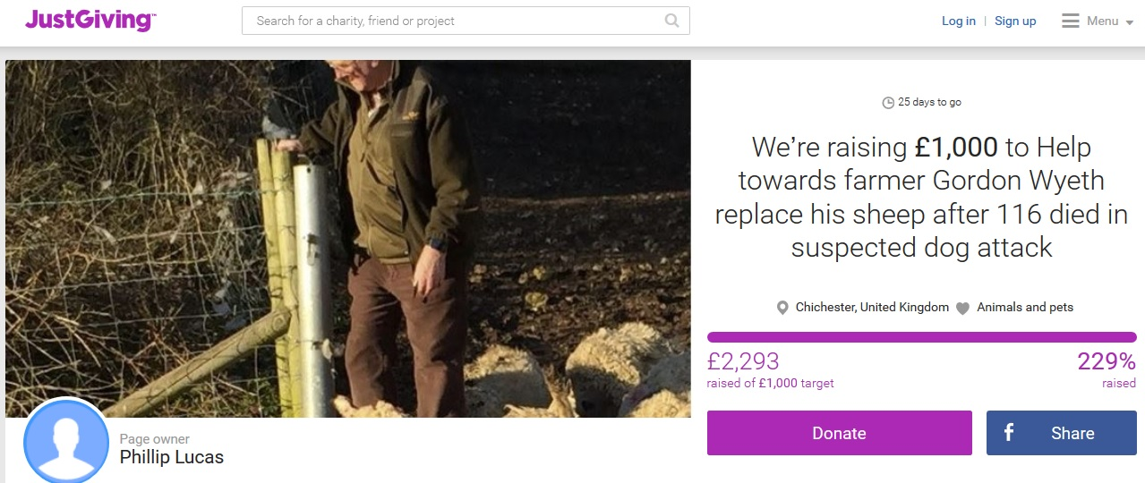 Crowd-funding campaign launched to help raise money for victim of sheep worrying
