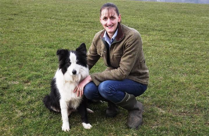 National Sheep Association appoints Northern Regional Manager