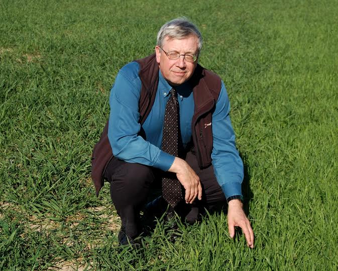 Don't compromise spray timings as crops catch up