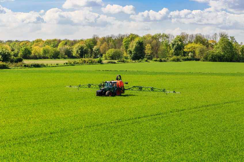 NFU President in Strasbourg to fight for glyphosate re-authorisation