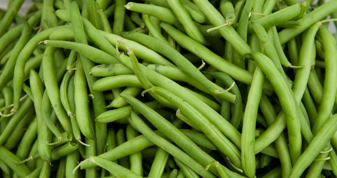 Tesco to save 135 tonnes of edible fine bean crop going to waste each year