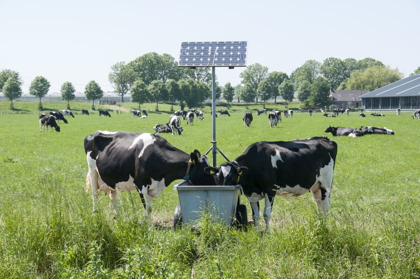 Solar, no matter how big or small, can give real benefits to farms