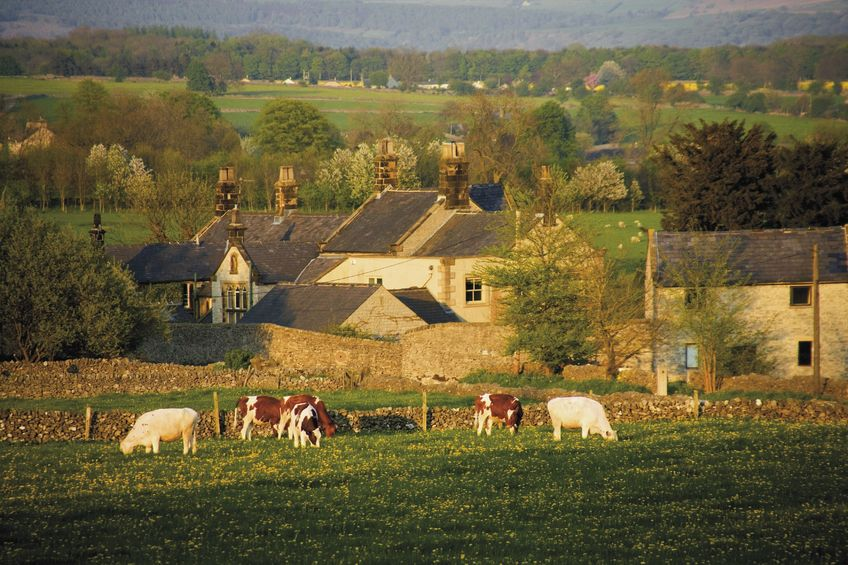 'Farm rents are falling but need to come down more', warns Tenant Farmers' Association