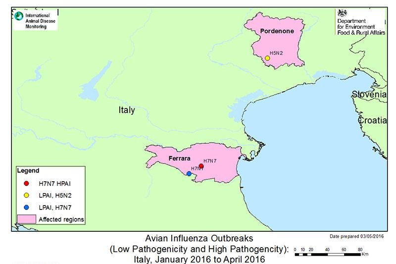 Italy confirms case of H7N7 High Pathogenic avian influenza in laying birds
