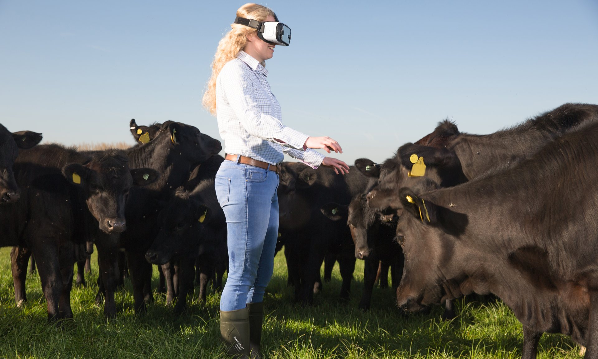 Fast food chain plans roadshow of agricultural shows around UK to connect consumers with modern farming realities