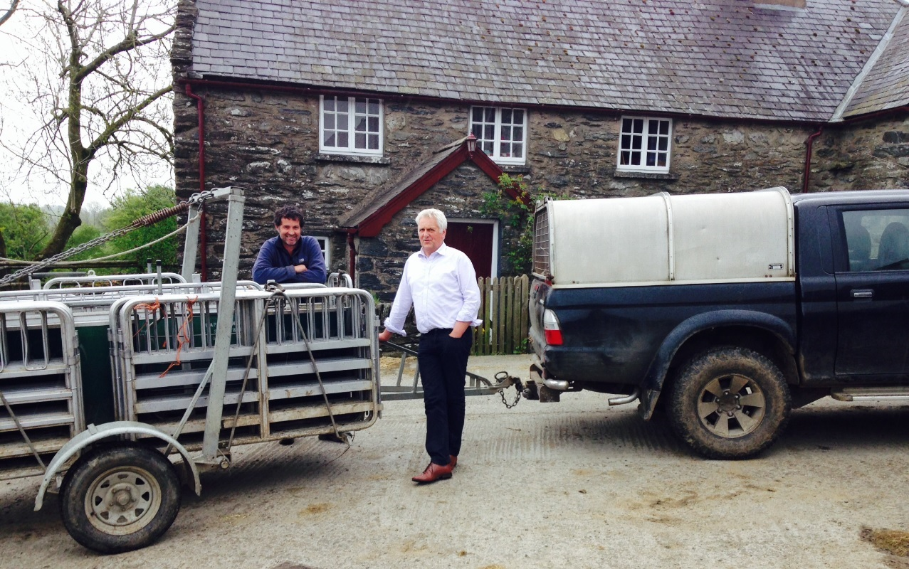 'It's vital that we maximise the returns to producers', British Wool Marketing Board says