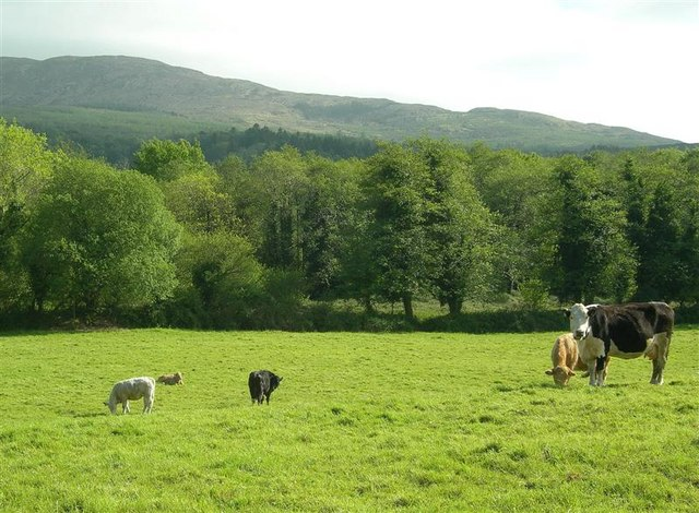 Tax tribunal: Grazing agreement owners must farm for Business Relief
