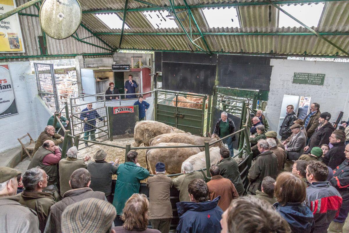 Livestock sold through markets hits ten year high
