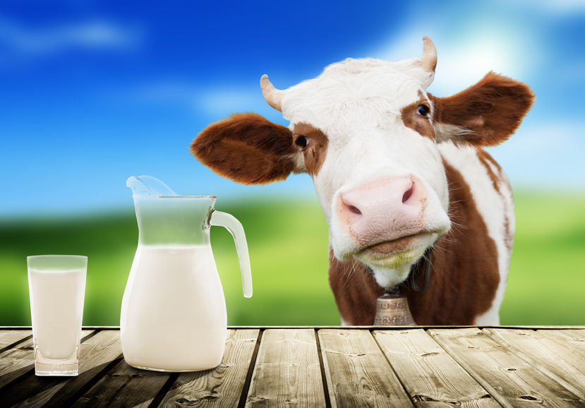 Since 2001, when the first World Milk Day was proposed by the UN's FAO, June 1st has become the day which all aspects of milk are celebrated worldwide