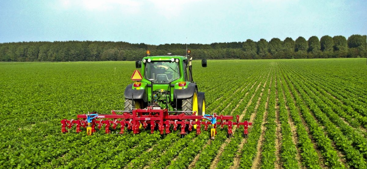 Report to unlock the potential of innovation in Europe's agri-food sector