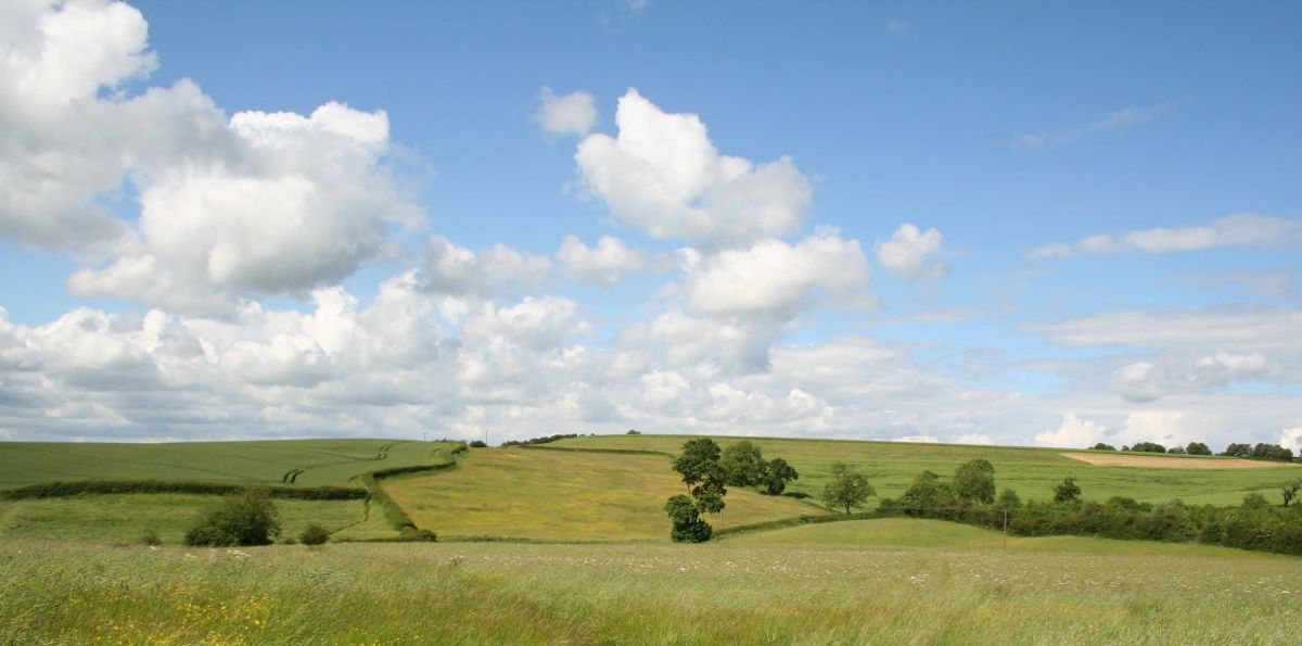 Landowners advised to diversify as agricultural land values cool