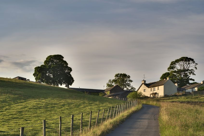 Survey shows benefits of contract farming as tough times bite
