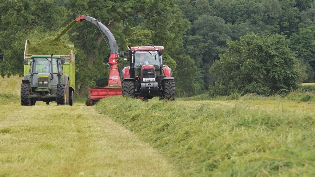 Maximise value of forthcoming silage cuts to make up for light first cuts