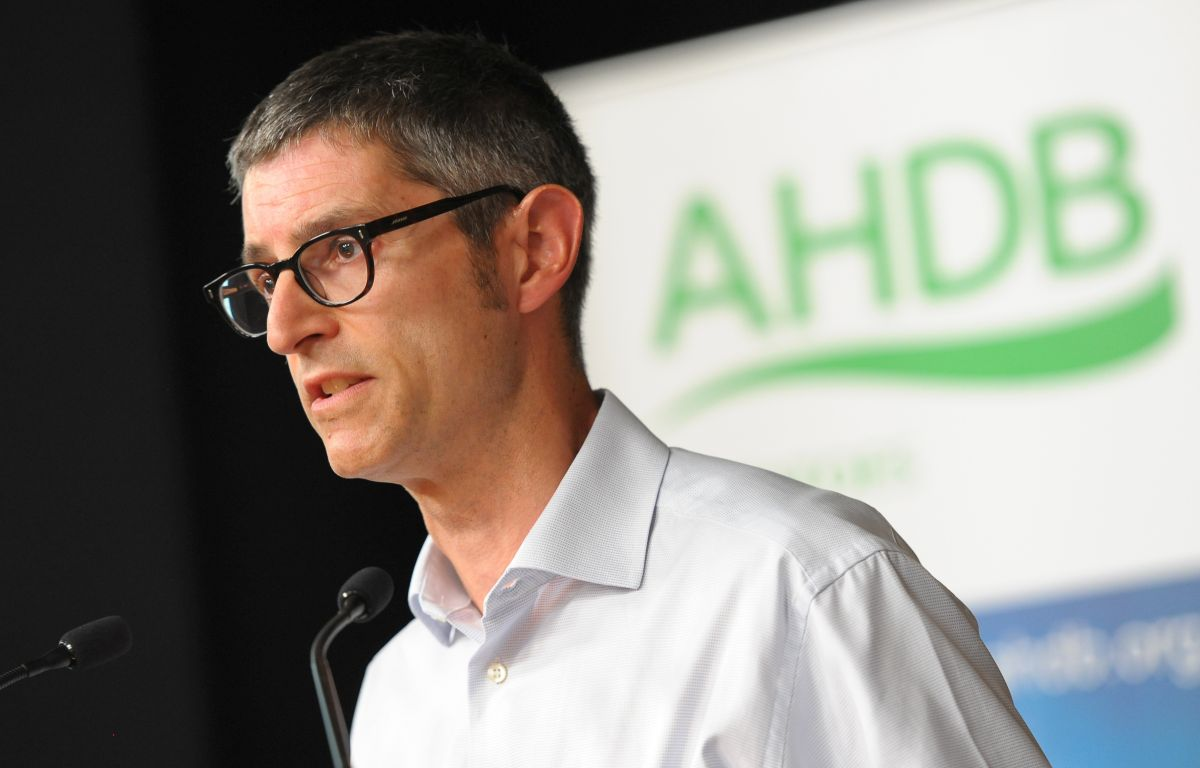 New head of domestic market for AHDB beef and lamb announced