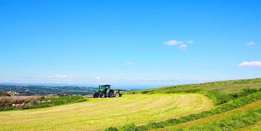 Small farmers need to drive post-Brexit agriculture, Landworkers' Alliance urge