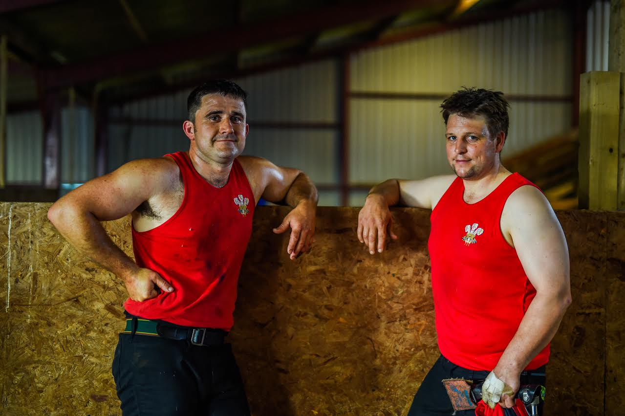 Welsh sheep shearing duo aim to shear as many lamb as possible in nine hours