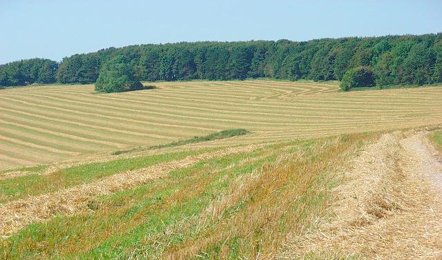 Non-farming buyers set to 'exert more influence' over farmland market following Brexit