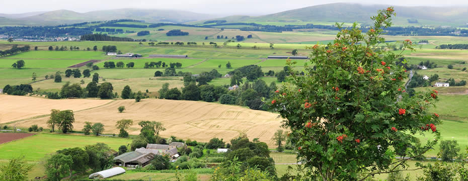 Landowners call on new goverment to tackle acute housing shortage in rural areas