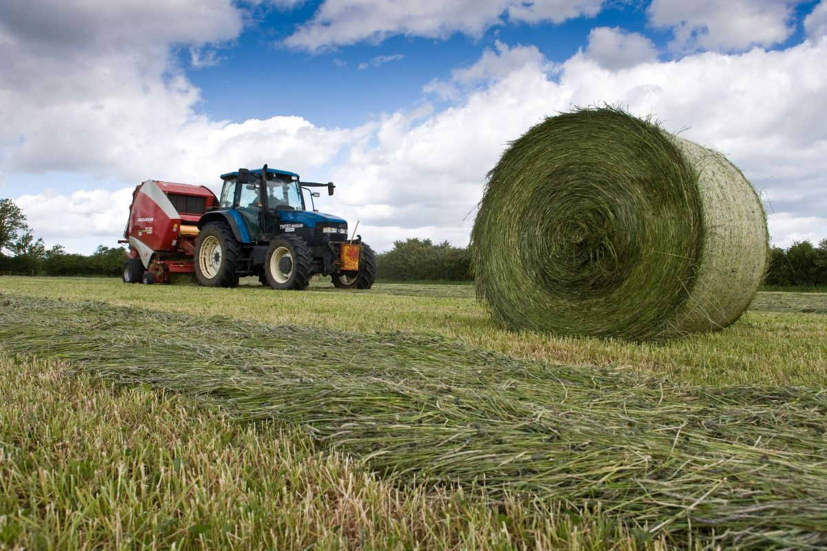 Farmers advised to study silage swiftly to aid financial planning