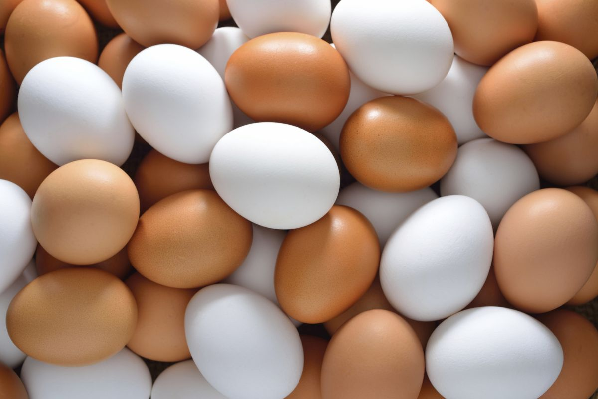Currently 40% of shoppers buy eggs from enriched cage systems