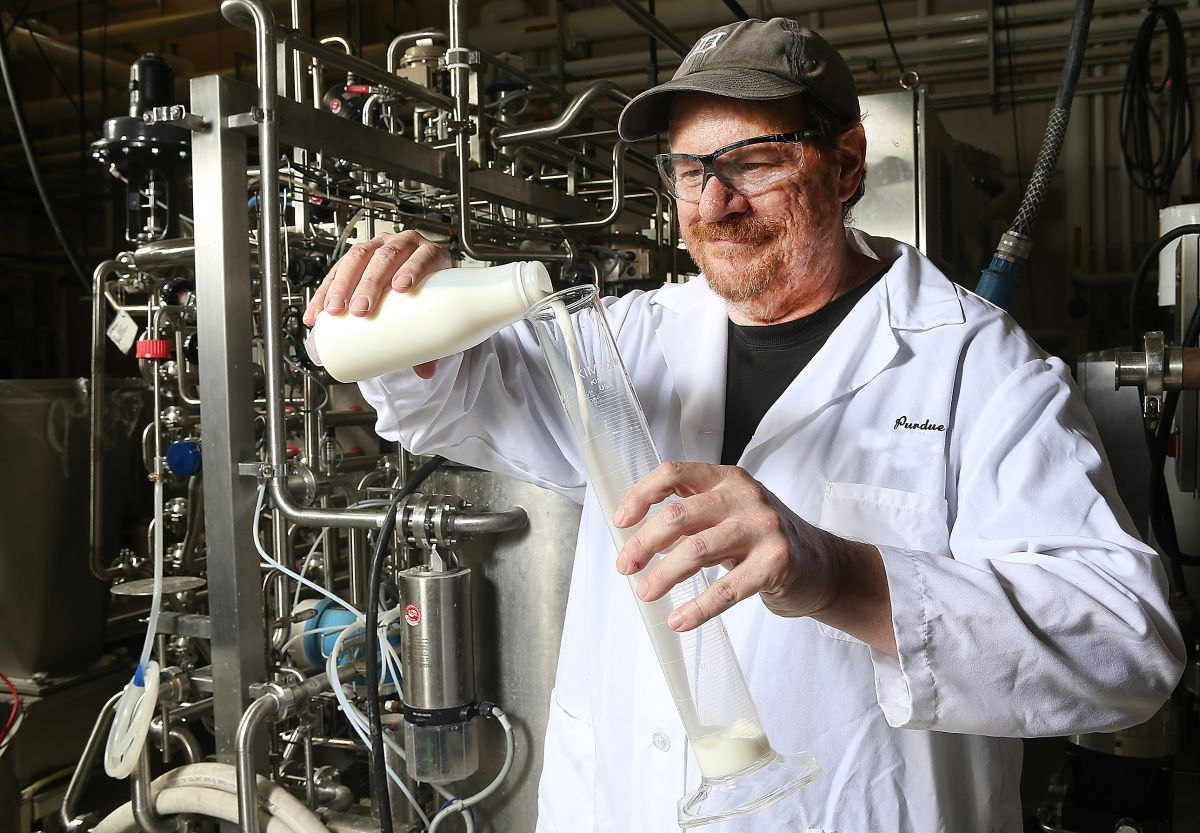 Rapid low-temperature process adds weeks to milk's shelf life, US study shows