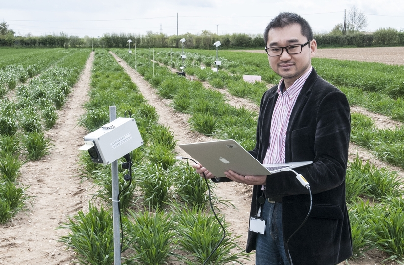 Dr Ji Zhou establishing CropQuant workstations in the field trials to monitor crop growth at JIC farm (Photo: John Innes Centre)