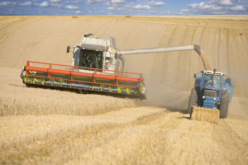 UK wheat stocks at the end of 2015/16 increased by 34% year-on-year to the highest on records
