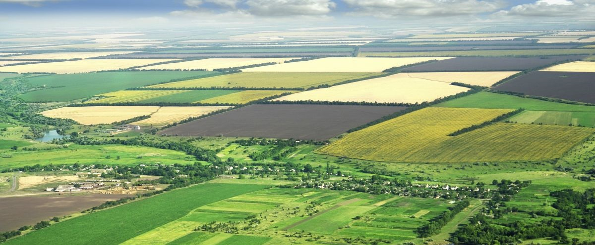 Considerable increase in farmers expecting no business growth, says new survey
