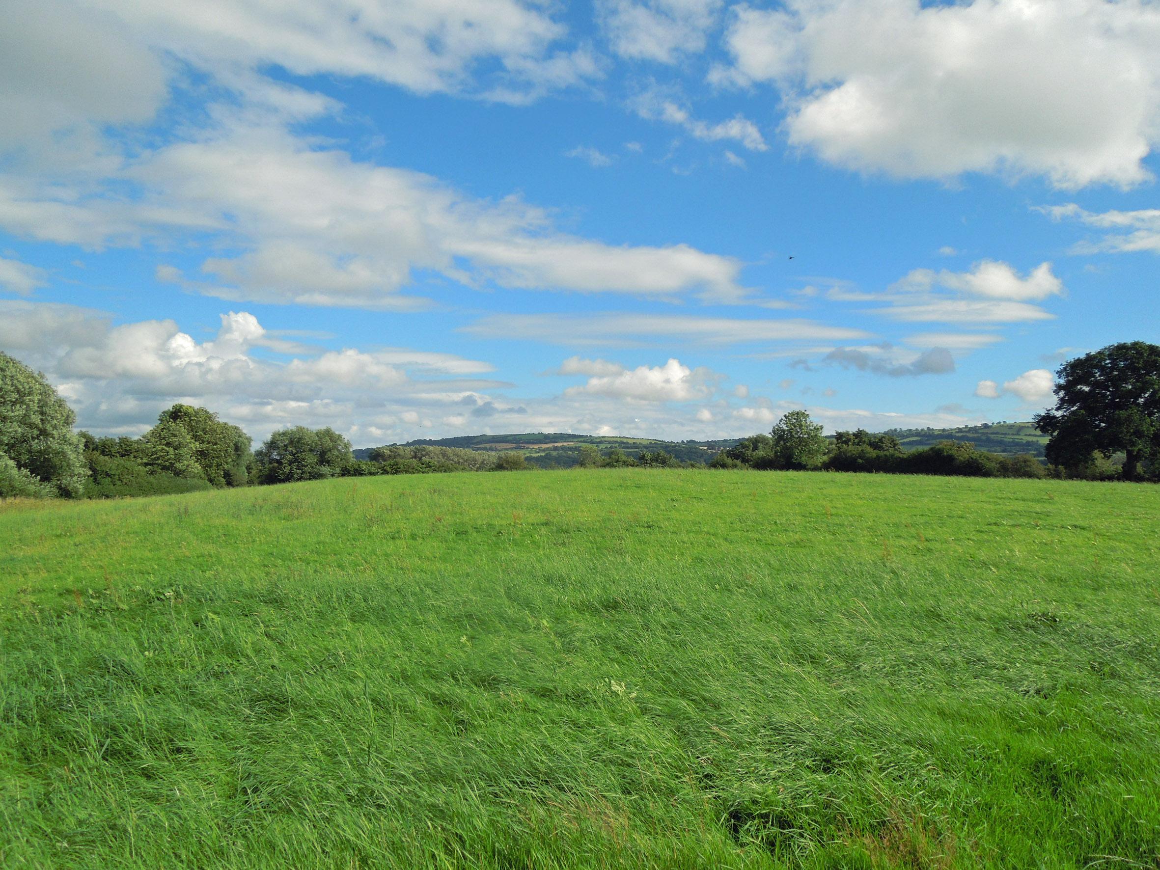 Welsh border pastureland on the market with Halls