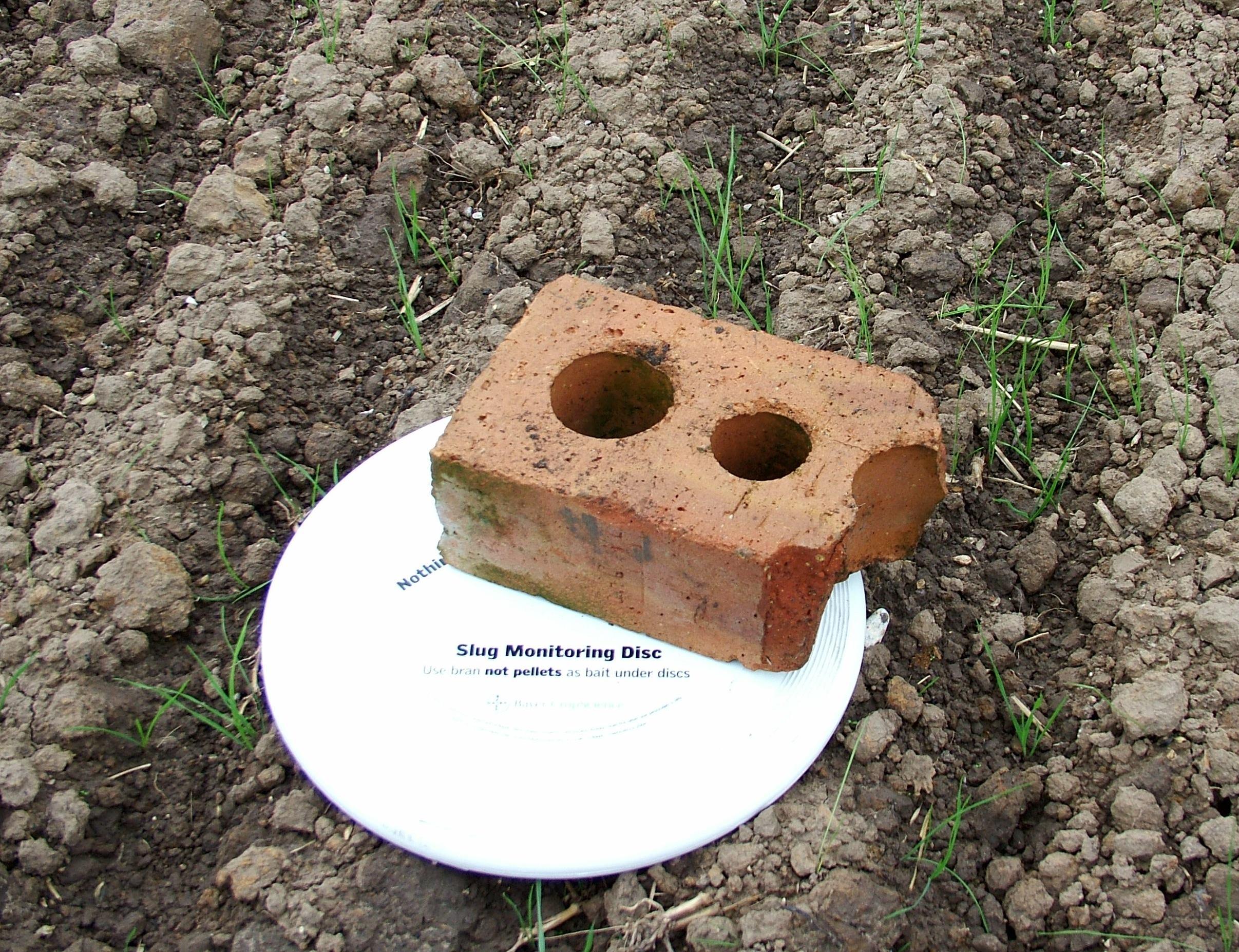 Effective slug control strategies for an ever-increasing problem