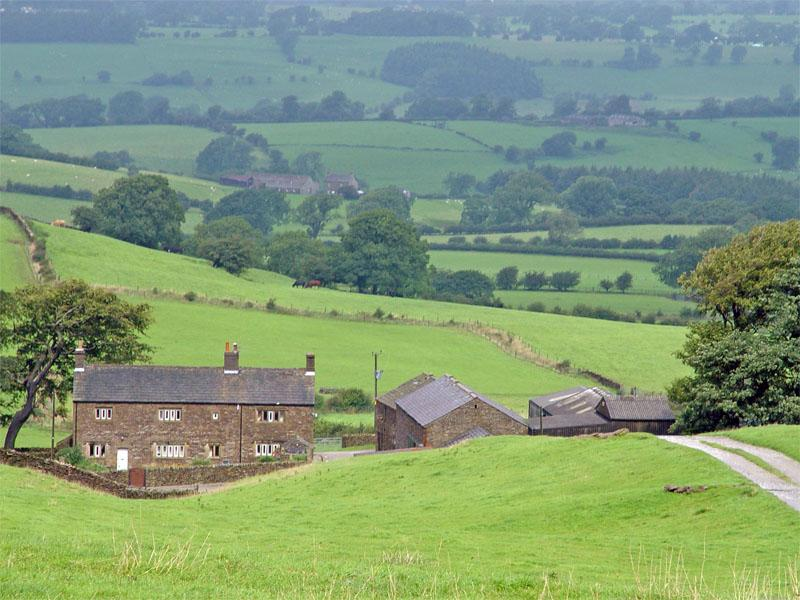 Rural property markets 'continue to function as normal' despite Brexit vote