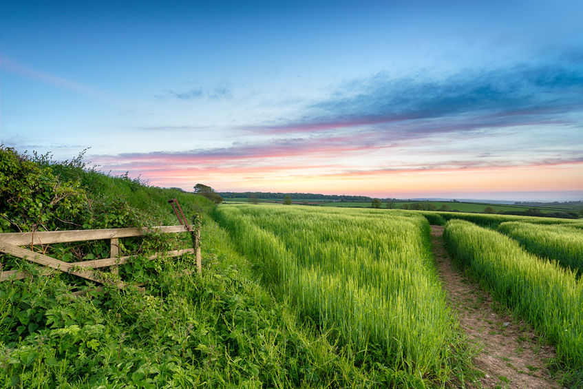 Less than a week to go until environment-focused Countryside Stewardship deadline