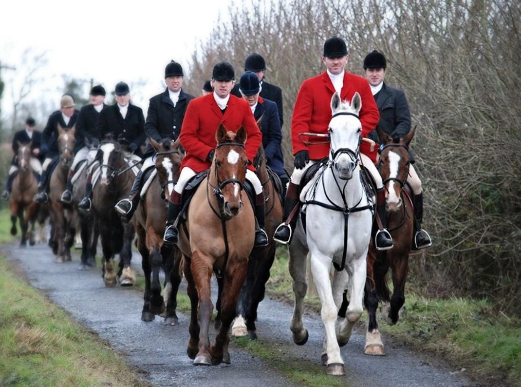 Government urged to focus on farm welfare, not hunting repeal