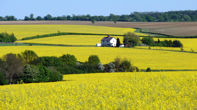'Changes needed to Neighbourhood Planning Bill to help rural economy thrive and grow'