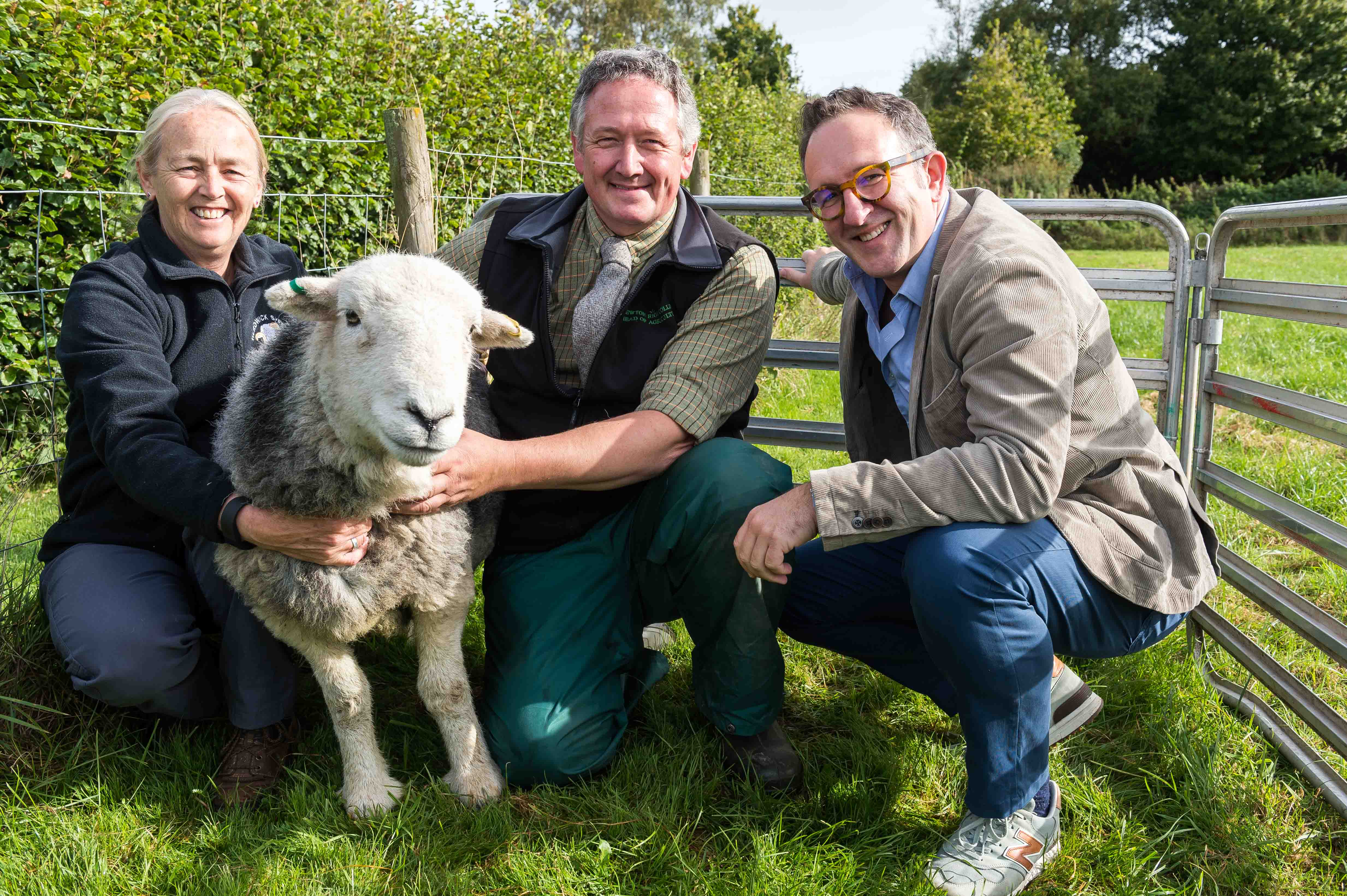 Initiative to help protect and preserve iconic Herdwick sheep breeds gets underway