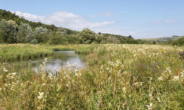 Both organisations agree that agri-environment schemes are the best way to protect the countryside