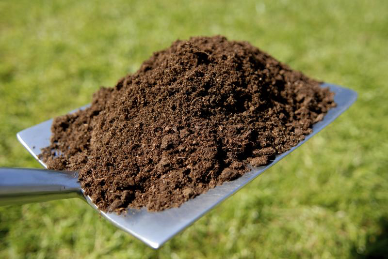 The government made a response to the Environmental Audit Committee (EAC)'s report on soil health, which was published in June